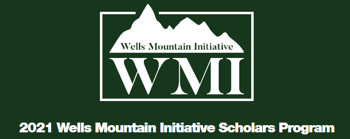 Beasiswa wells Mountain initiative
