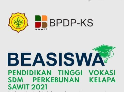 Beasiswa SDMPKS 2021